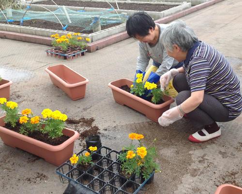 service_day_photo_01.jpg
